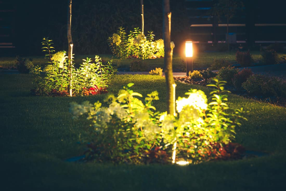 Front yard In-Ground Well Lights