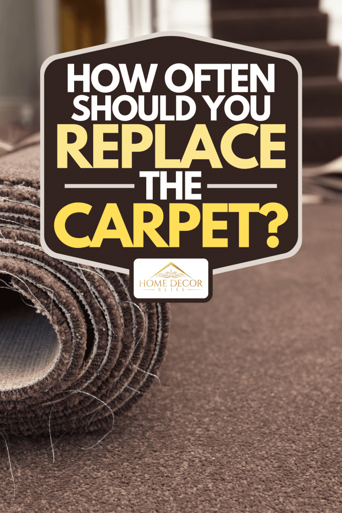 A carpet fitting in a modern home with carpeted stairs, How Often Should You Replace The Carpet?