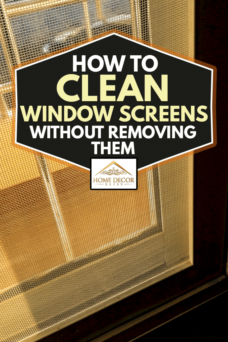 light coming from the window with window screen, How To Clean Window Screens Without Removing Them