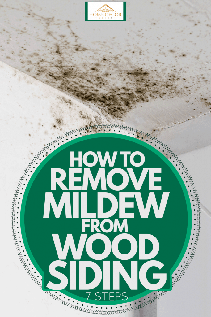 Mildew growing on the side of a wooden wall, How To Remove Mildew From Wood Siding [7 Steps]