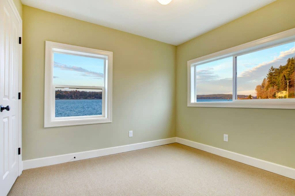 Living room with light green colored wall, carpeted flooring, and a small window on each side