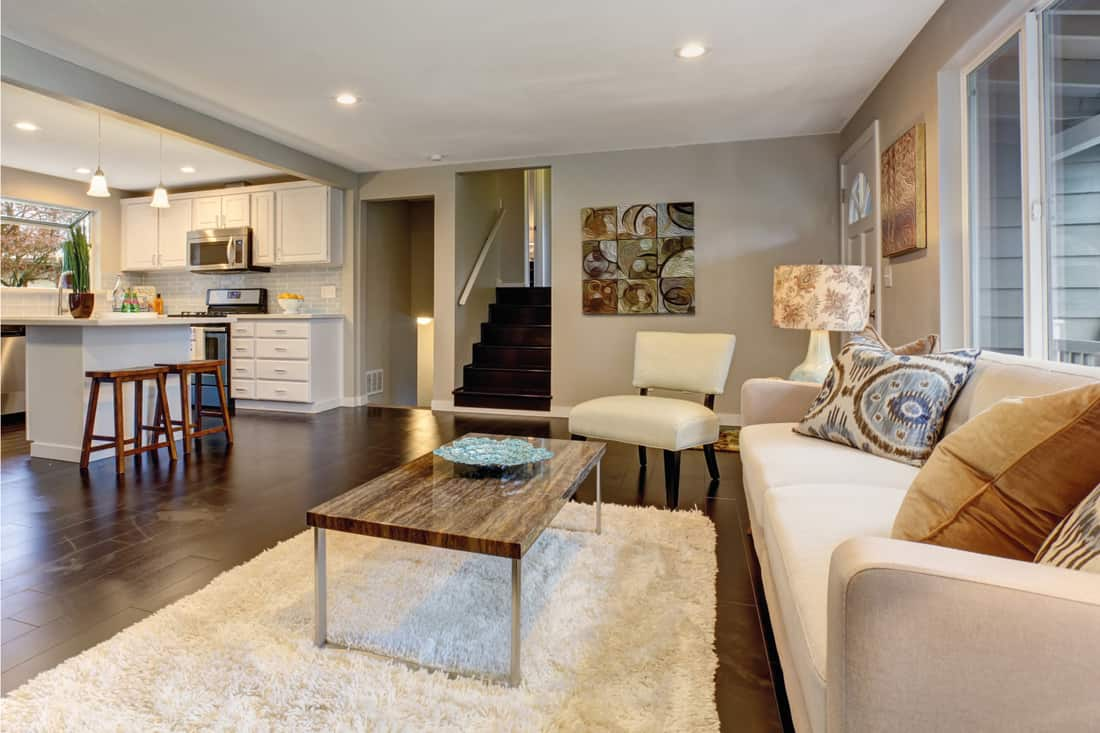 Modern living room with dark hardwood floor and white furniture