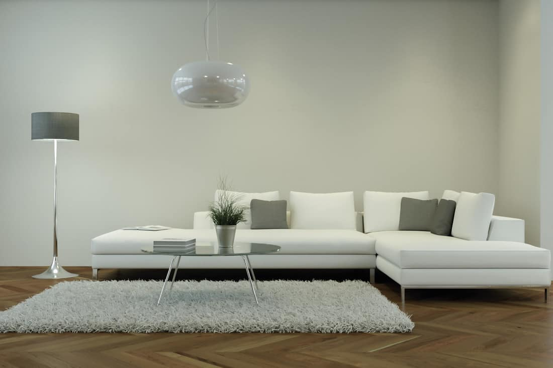 Modern white living room interior design with white couch