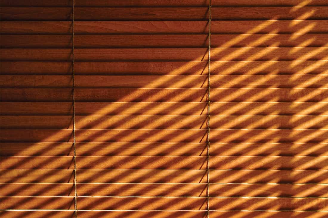 Sunlight through one venetian casts shadows on another wood blind