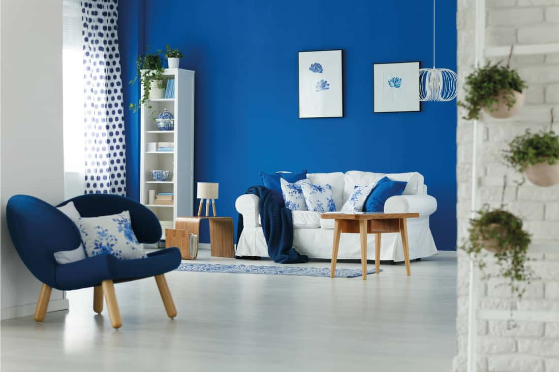 Trendy blue and white living room with gray flooring