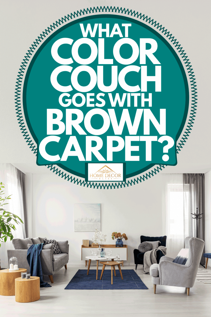 What Color Couch Goes With Brown Carpet Home Decor Bliss