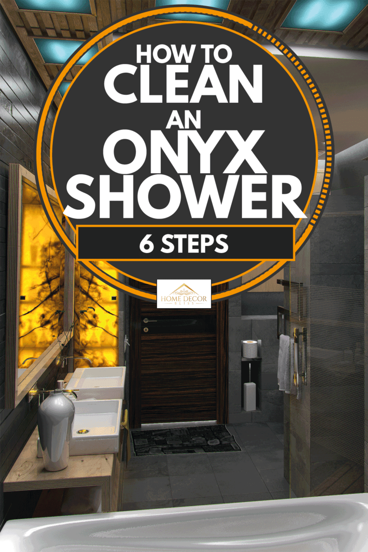 Black onyx walling on a luxurious toilet and shower room, How To Clean an Onyx Shower [6 Steps]