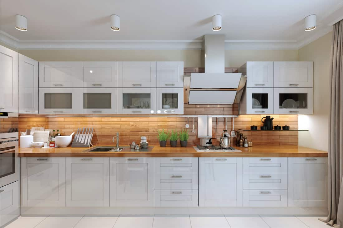 contemporary style kitchen with wooden (butcher block) countertop