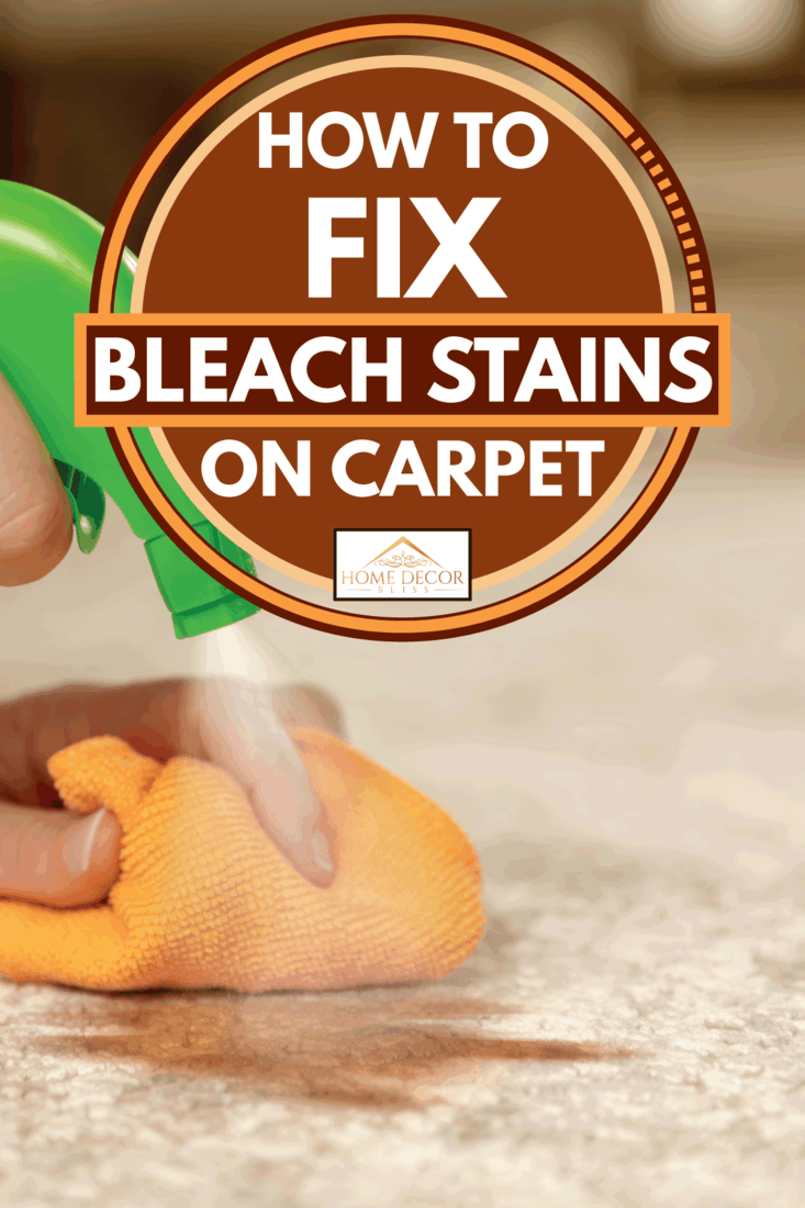 Lady hands using spray and lint free cloth to remove stain from carpet, How To Fix Bleach Stains On Carpet