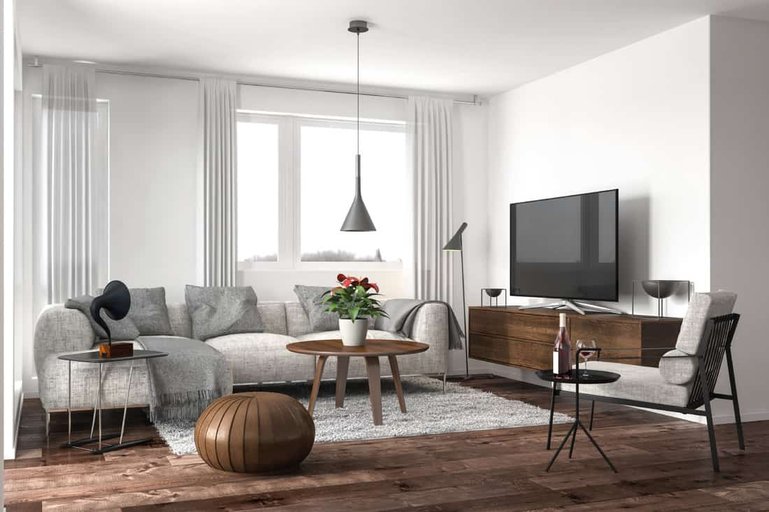light couch, rug, and walls in a modern living room with dark hardwood floor and dark furniture
