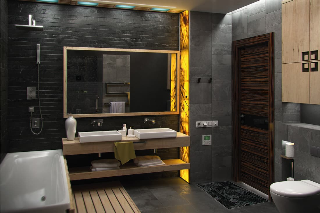 Modern minimalist bathroom with onyx shower