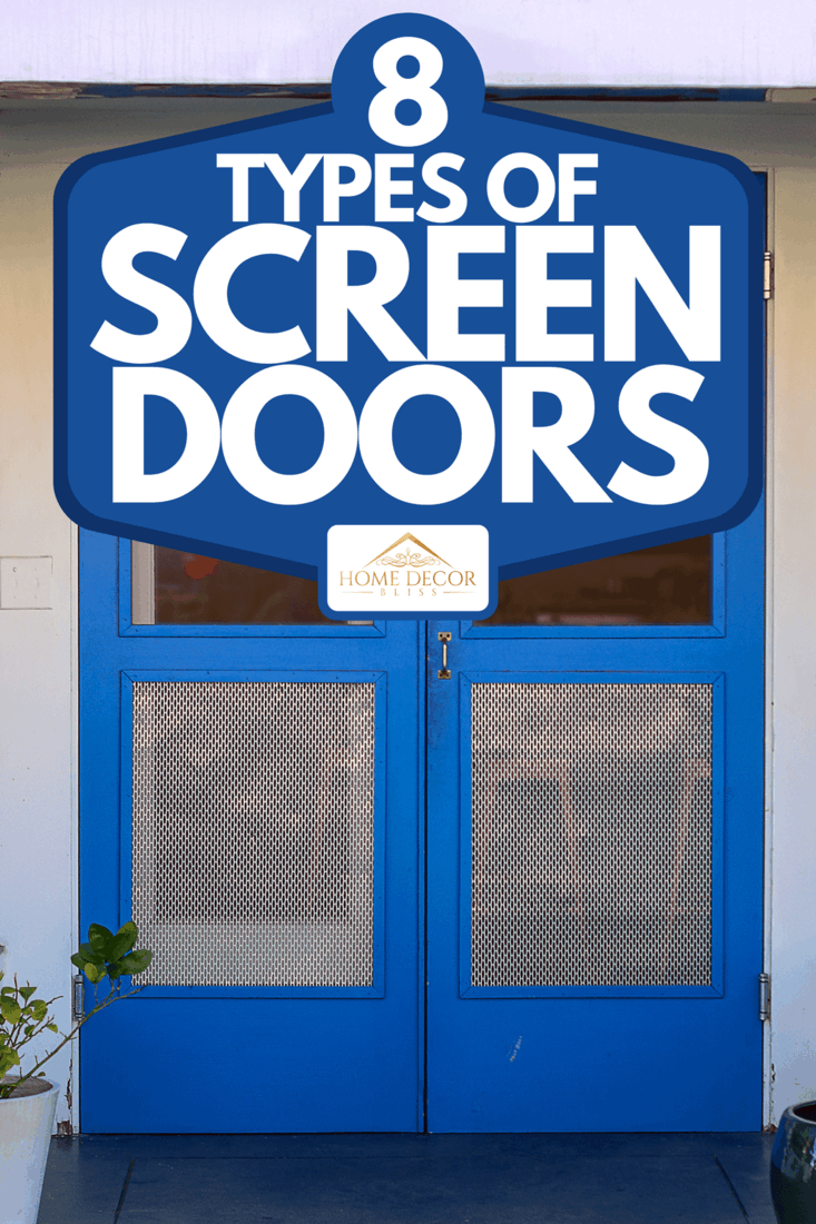A blue wooden doors as an entrance to a building covered with screen and has reflections in the top portion of the doors, 8 Types Of Screen Doors