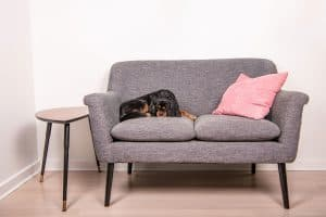 How Big Is A Loveseat?