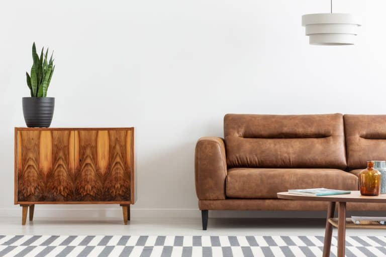 A brown leather sofa with a wooden nightstand with a snake plant on top, 8 Best Faux Leather Conditioners