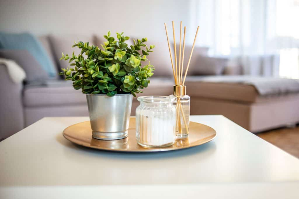 Aroma sticks and an indoor plant inside a table