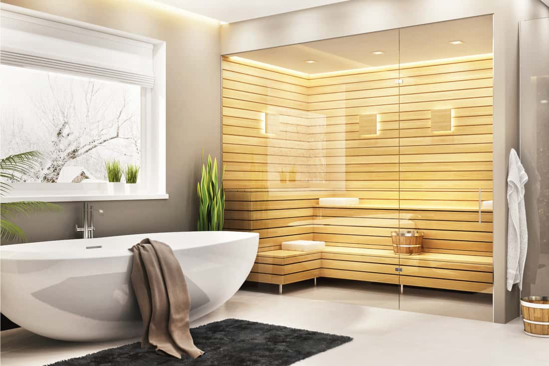 Beautiful bathroom with white bath and sauna and steam shower in a modern home