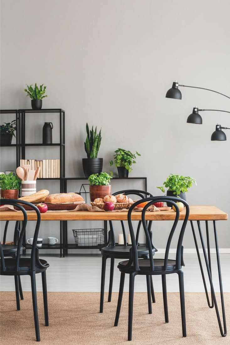 Black chairs at wooden table with food in gray dining room interior with lamp and plants