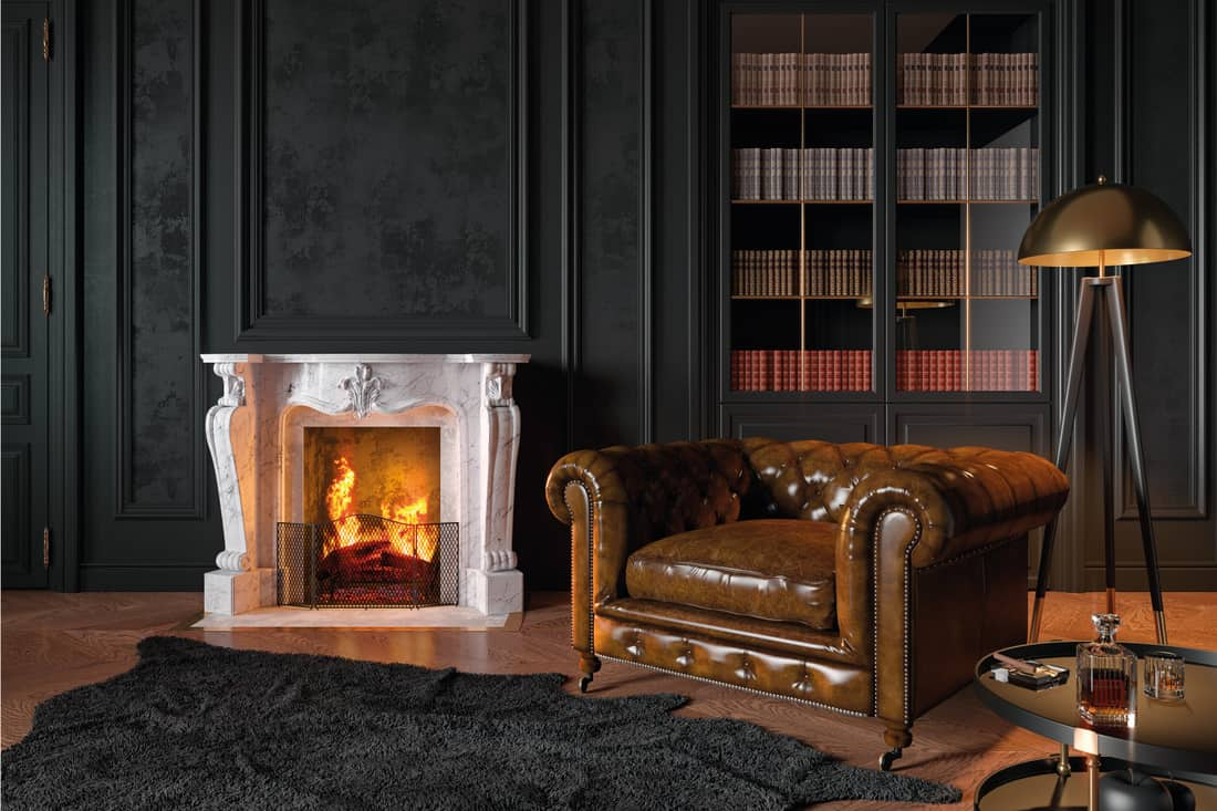 Black classic interior with armchair, moldings, fireplace, floor lamp, carpet, books, coffee table and decor