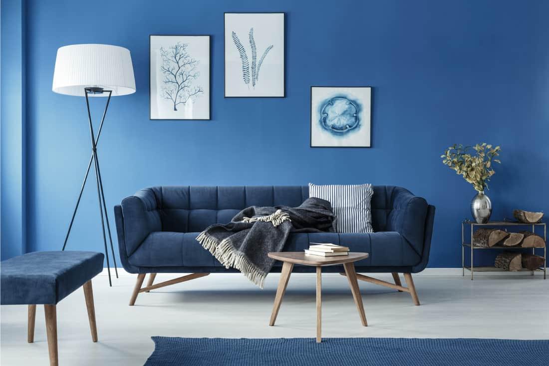 Blue stylish elegant retro living room with sofa and navy blue carpet