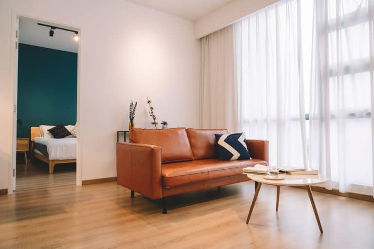 A brown leather sofa inside a contemporary living room with white walls, wooden flooring and a huge window with white curtains, Why Is My Leather Couch Wrinkling?