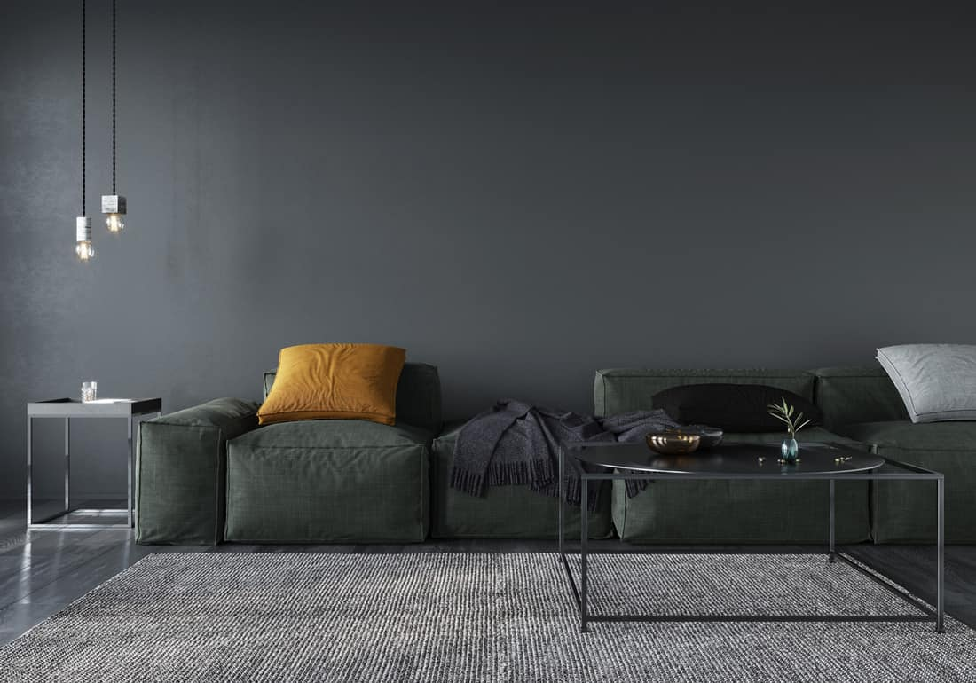 Contemporary modern living room with gray carpet and matching gray walls