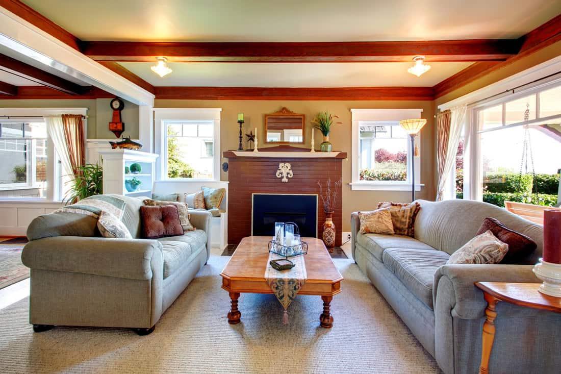 Elegant antique style living room with sofa