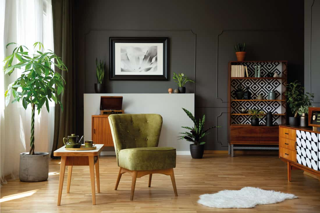 Green armchair standing in living room interior with retro cupboards, fresh plants, white rug and end table with tea set