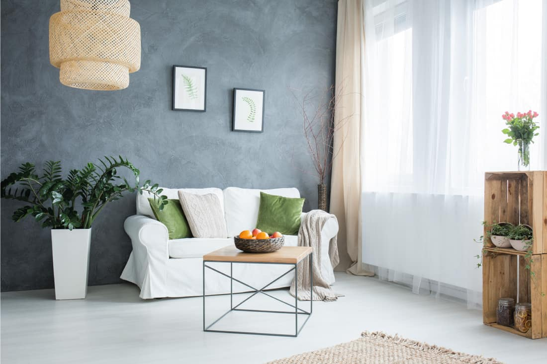 Gray living room with sofa, house plants, green throw pillows and white curtains