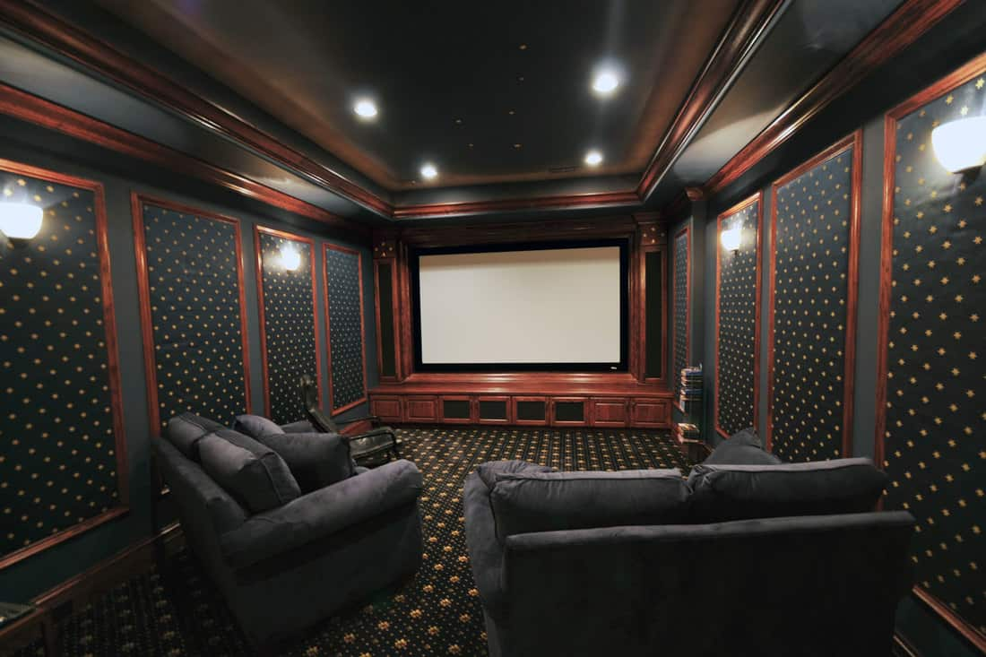 Home Theatre with a big screen and a loveseat sofa