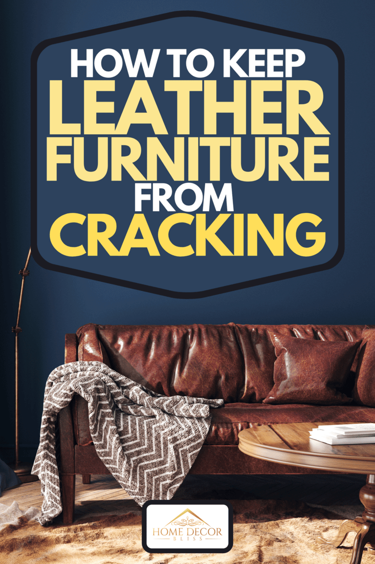 A dark blue home interior with old retro leather furniture, How To Keep Leather Furniture From Cracking
