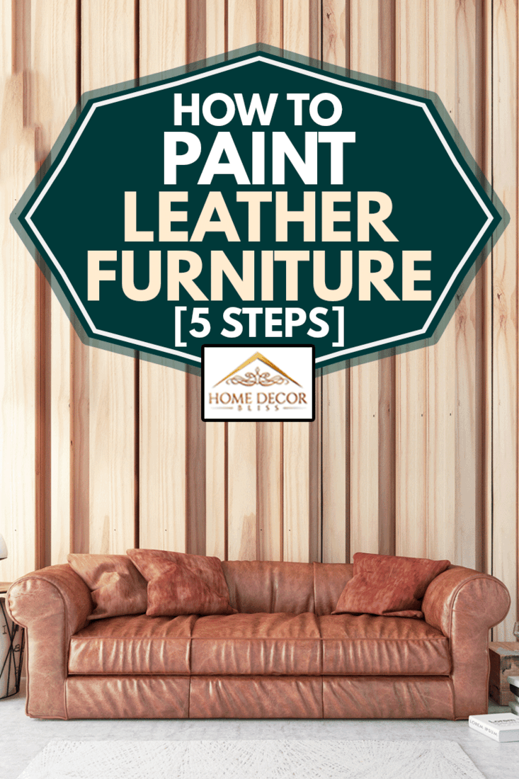 Modern Living Room with newly painted Leather Sofa, How To Paint Leather Furniture [5 Steps]