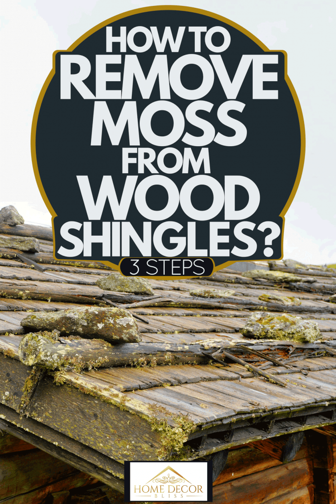 Molds growing on the shingles of a house, How To Remove Moss From Wood Shingles? [3 Steps]