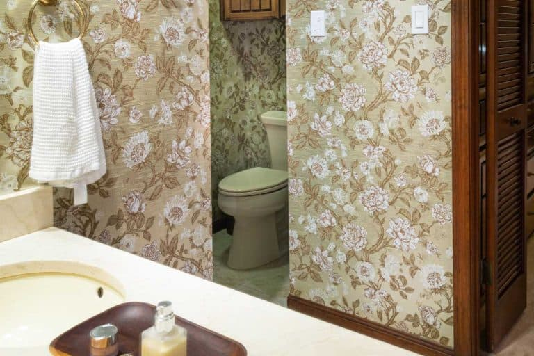 Interior of 1970's style master bathroom with old fashioned wall paper design, old bathroom finishes and carpet in closet area, What Can You Put On Bathroom Walls Instead Of Tiles?