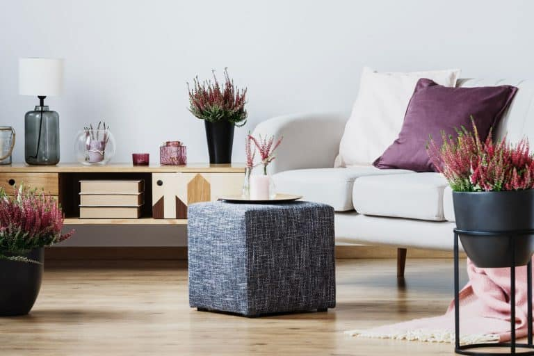 Interior of a contemporary living room with a gray ottoman, white sofas, and a indoor plants, Can An Ottoman Be Used As A Table?
