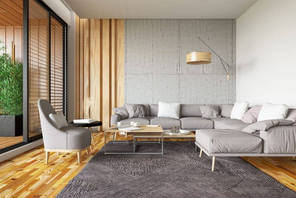 Interior of an ultra modern contemporary living room with a wooden flooring, gray carpet and sofas, and a light gray painted walls