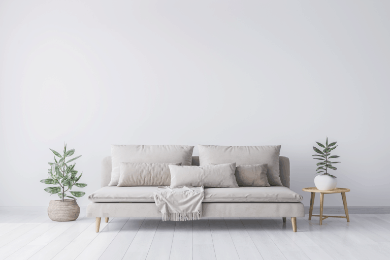 Light gray sofa inside white living room, Where To Buy A Couch [Top 20 Online Stores]