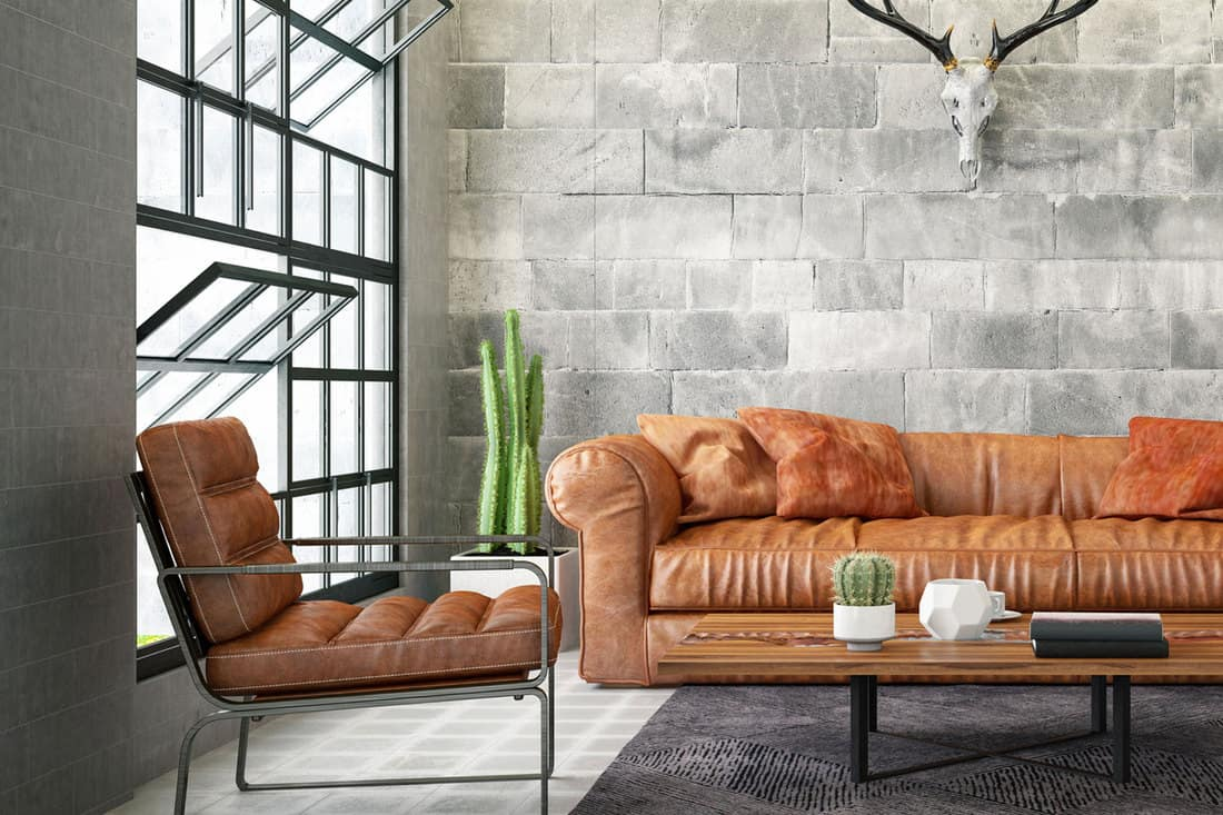 Loft Interior with Leather Sofa and Skull, What Are The Best Leather Wipes? [3 Options]