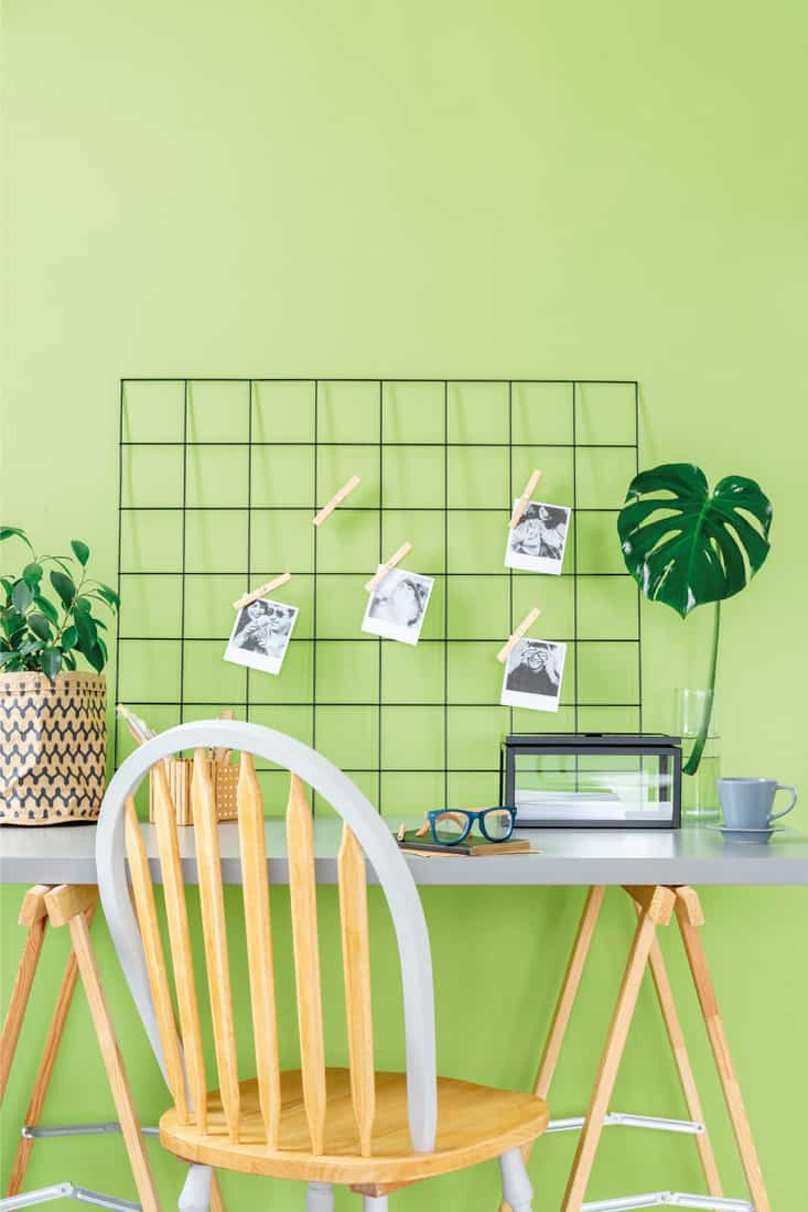 Metal organizer with polaroid photos placed on study corner desk with glasses on notebook and gray tea cup standing in green room interior