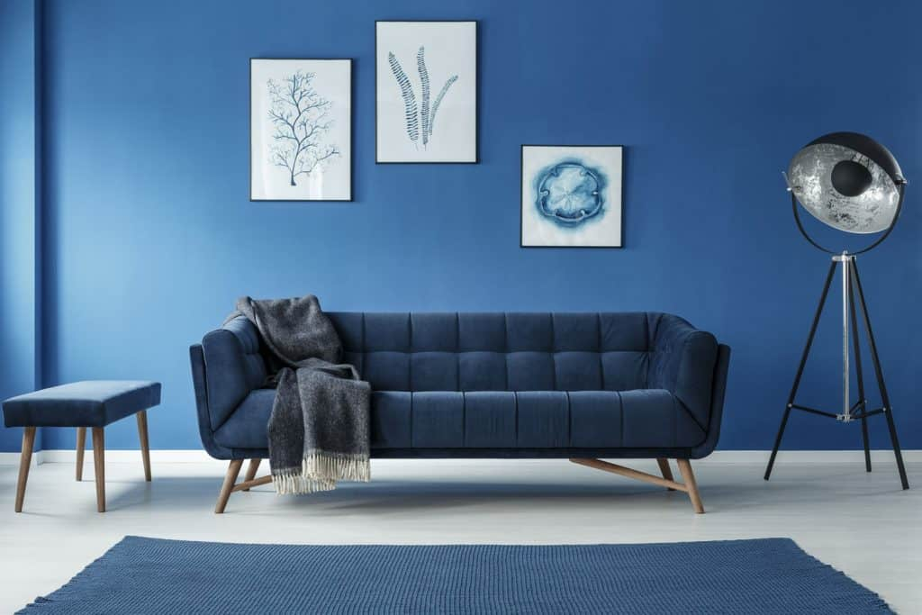 Modern blue inspired living room with a blue long sofa, blue painted wall, and a blue carpet