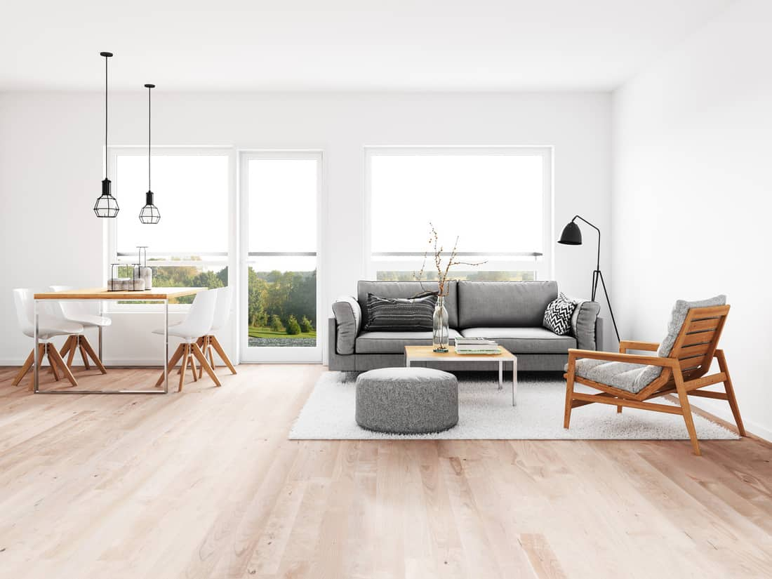 Modern dining room and living room with no end table
