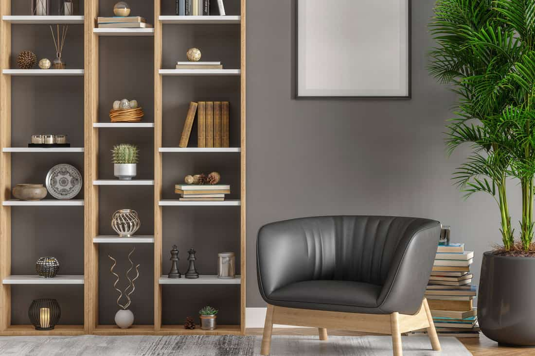 Picture Frame, Library with bookcases And Plants In Living Room, How Tall Are Bookcases? Here Are the Standard Dimensions