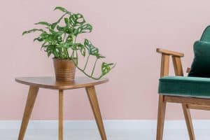 Read more about the article 11 Small Side Table Decorating Ideas