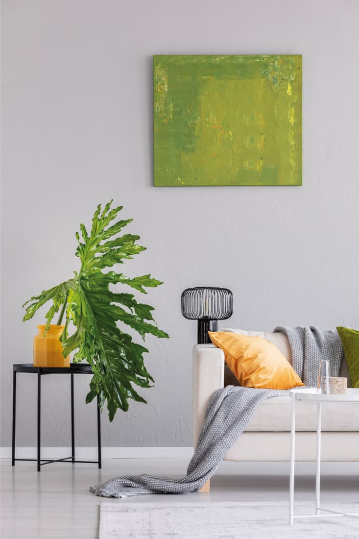 Plant on table next to settee with lamp and blanket in gray loft interior with green poster