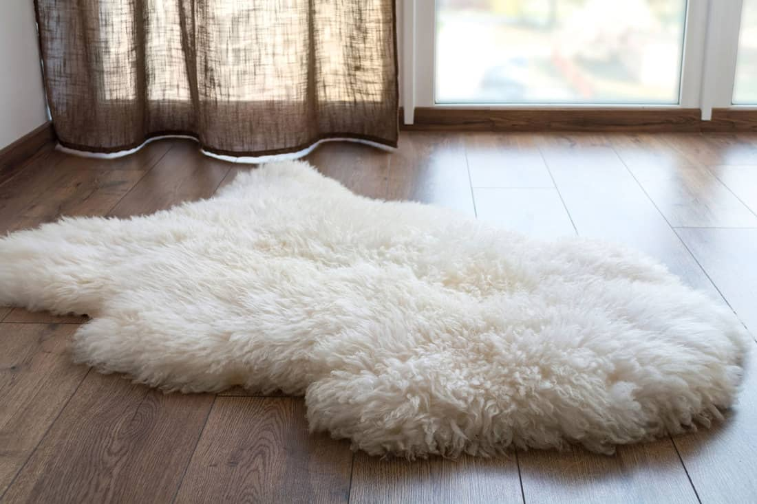 Sheep skin on the laminate floor in the room. Cozy place near the window, How To Clean A Faux Fur Rug [5 Steps]