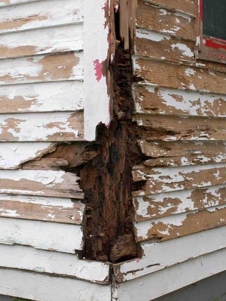 Siding on house is rotten and termite damaged
