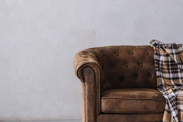 Small leather sofa with a checkered blanket on it inside a gray living room, How to Restore Leather Furniture [4 Steps]
