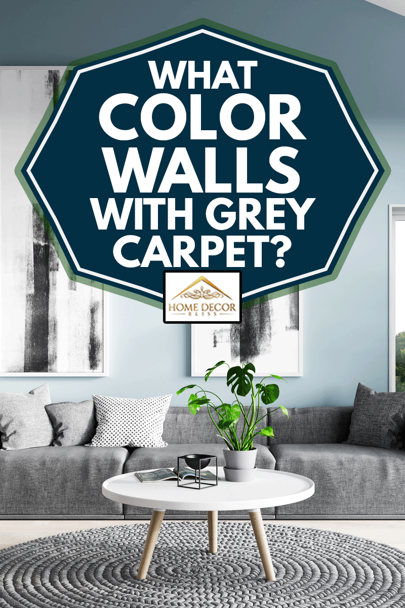 What Color Walls With Grey Carpet Home Decor Bliss