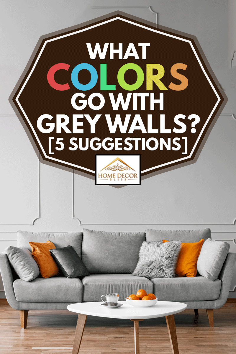Stylish coffee table with kinck knacks in front of elegant couch with pillows, What Colors Go With Grey Walls? [5 Suggestions]