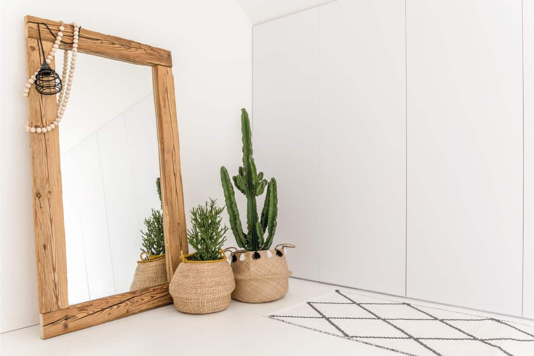 White room with mirror with wooden frame and decorative cactus, strategically using mirrors