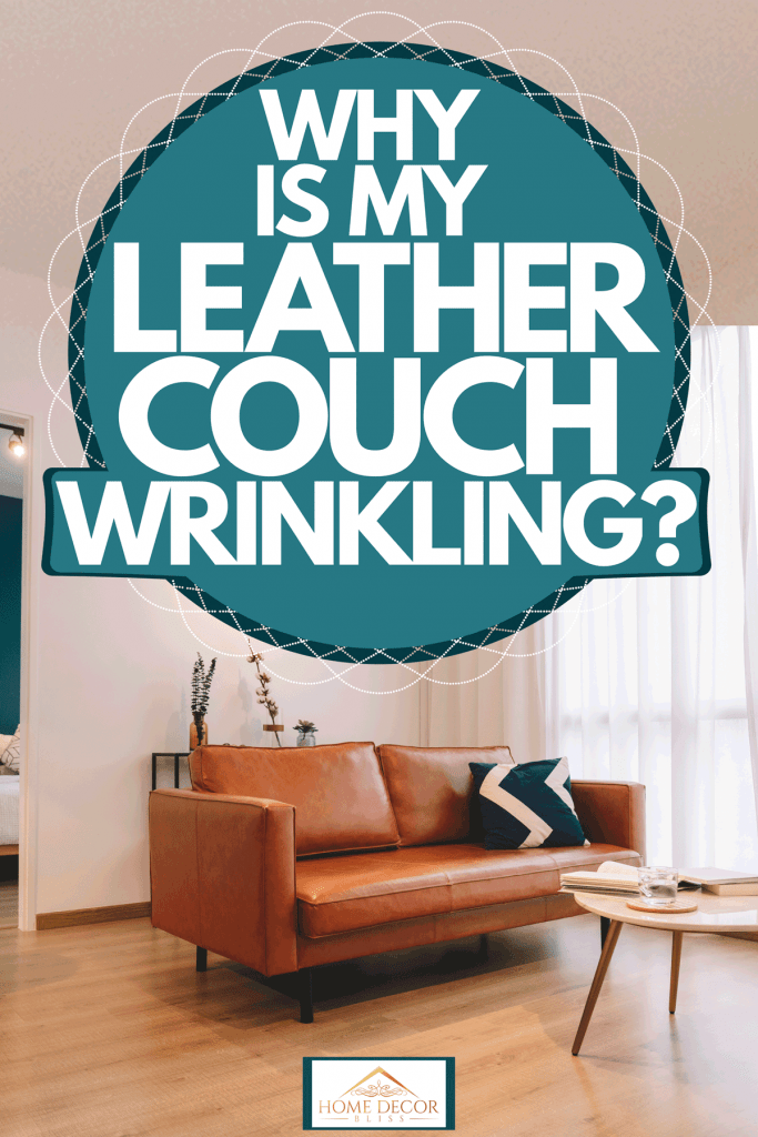 Brown leather sofa inside a contemporary living room with white walls, wooden flooring and a huge window with white curtains, Why Is My Leather Couch Wrinkling?